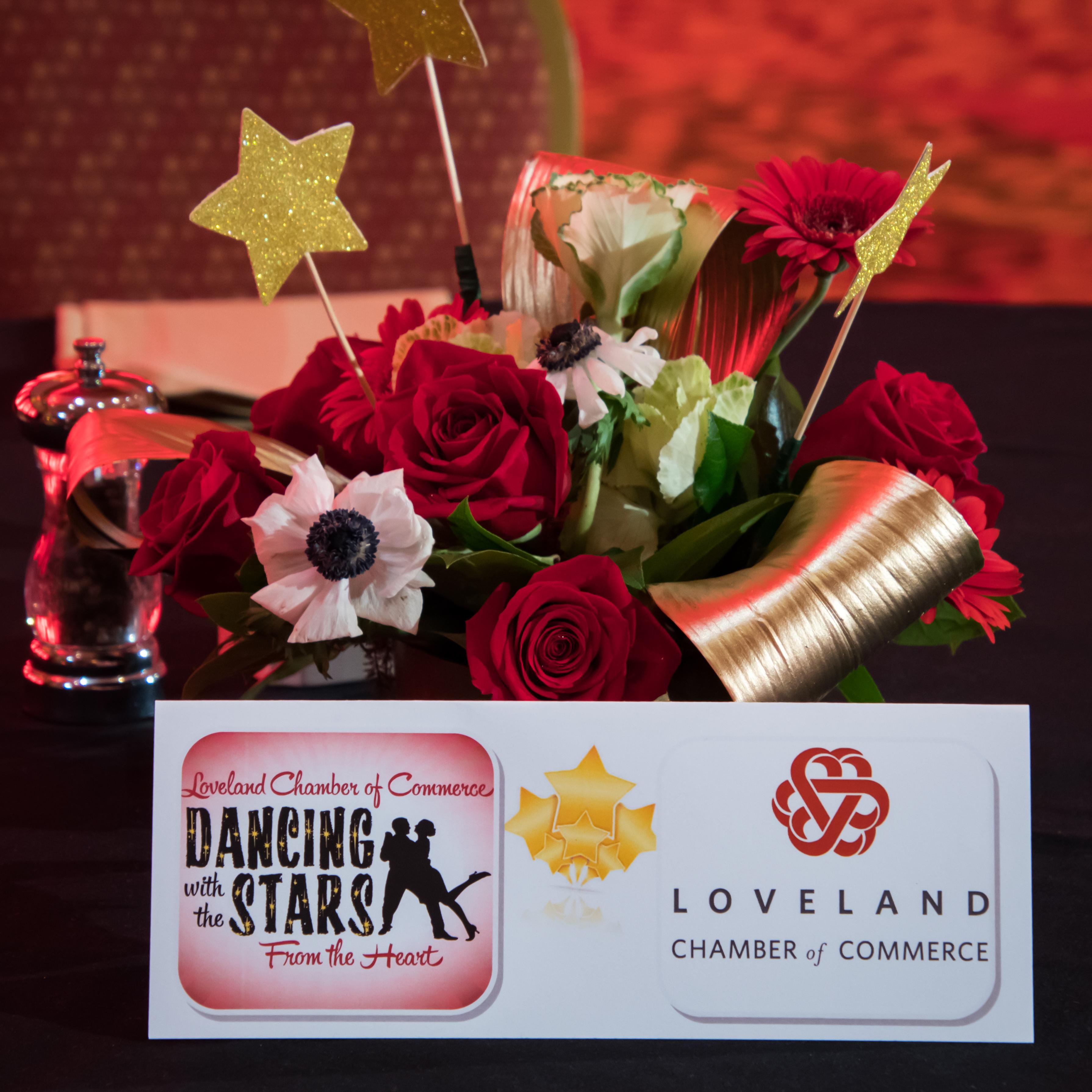 DancingStars2018-6879