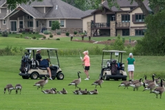20180622LCCGolf DSC_5196untitled